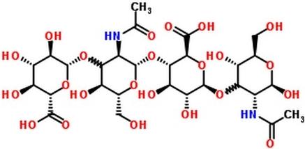Гиалуроновая кислота фото